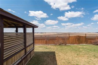 Photo 42: 132 Harrison Court: Crossfield Detached for sale : MLS®# C4296554