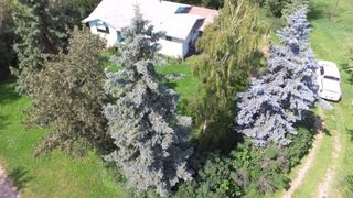 Photo 30: 30035 RGE Rd 14: Rural Mountain View County Detached for sale : MLS®# A1021725