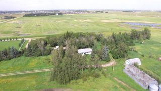 Photo 34: 30035 RGE Rd 14: Rural Mountain View County Detached for sale : MLS®# A1021725