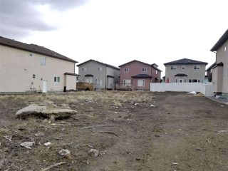 Photo 1: 16747 62 Street in Edmonton: Zone 03 Vacant Lot for sale : MLS®# E4173858