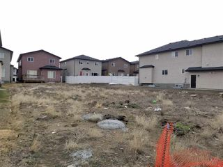Photo 2: 16747 62 Street in Edmonton: Zone 03 Vacant Lot for sale : MLS®# E4173858