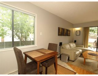 Photo 4: 2 137 E 5TH Street in North_Vancouver: Lower Lonsdale Condo for sale (North Vancouver)  : MLS®# V780710