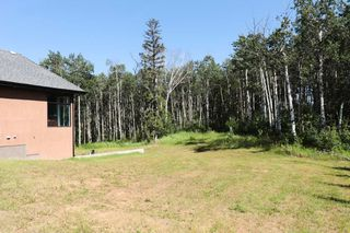 Photo 40: 14 51222 RGE RD 260: Rural Parkland County House for sale : MLS®# E4179125