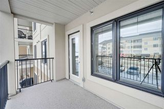Photo 26: 202 1031 173 Street in Edmonton: Zone 56 Condo for sale : MLS®# E4192376