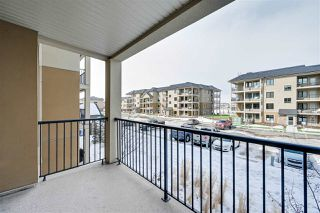 Photo 25: 202 1031 173 Street in Edmonton: Zone 56 Condo for sale : MLS®# E4192376