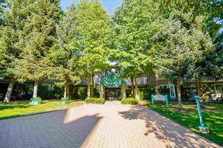 """Photo 5: 301 15150 108 Avenue in Surrey: Guildford Condo for sale in """"Riverpointe"""" (North Surrey)  : MLS®# R2497627"""