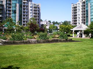 "Photo 54: # 303 - 1189 Eastwood Street in Coquitlam: North Coquitlam Condo for sale in ""THE CARTIER"" : MLS®# V844049"