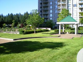 "Photo 55: # 303 - 1189 Eastwood Street in Coquitlam: North Coquitlam Condo for sale in ""THE CARTIER"" : MLS®# V844049"