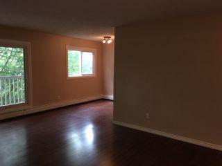 Photo 4: 306 10615 156 Street in Edmonton: Zone 21 Condo for sale : MLS®# E4165445