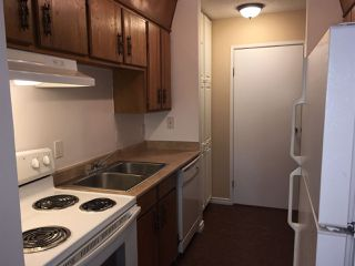 Photo 2: 306 10615 156 Street in Edmonton: Zone 21 Condo for sale : MLS®# E4165445