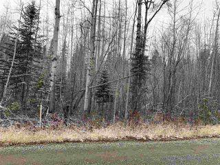 Photo 1: 9819 BIRCHILL Crescent in Prince George: Haldi Land for sale (PG City South (Zone 74))  : MLS®# R2417991