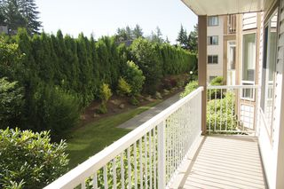 Photo 26: 108 32145 Old Yale Road in Abbotsford: West Abbotsford Condo for sale : MLS®# R2458286