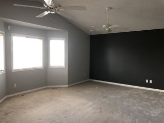 Photo 20: 4040 31 Street NW in Edmonton: Zone 30 House for sale : MLS®# E4202960