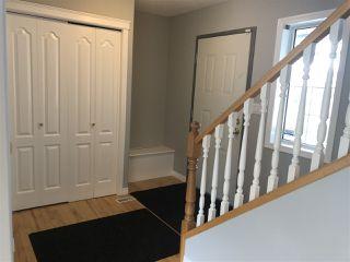 Photo 7: 4040 31 Street NW in Edmonton: Zone 30 House for sale : MLS®# E4202960