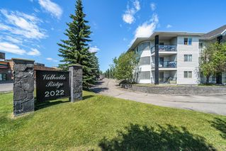 Photo 1: 308 2022 CANYON MEADOWS Drive SE in Calgary: Canyon Meadows Apartment for sale : MLS®# A1016312