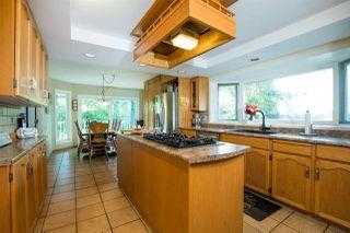 Photo 3: 5705 34B Avenue in Delta: Ladner Rural House for sale (Ladner)  : MLS®# R2502880
