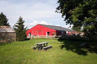 Photo 25: 5705 34B Avenue in Delta: Ladner Rural House for sale (Ladner)  : MLS®# R2502880