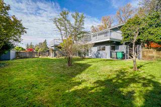 "Photo 38: 7294 BUFFALO Drive in Burnaby: Government Road House for sale in ""The Government Road Area"" (Burnaby North)  : MLS®# R2514835"