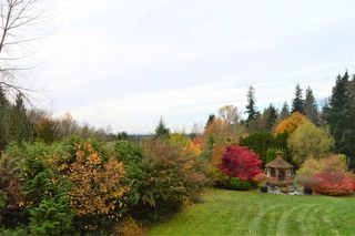 Photo 9: 12431 263 Street in Maple Ridge: Websters Corners House for sale : MLS®# R2524375