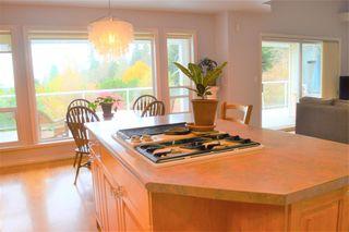 Photo 4: 12431 263 Street in Maple Ridge: Websters Corners House for sale : MLS®# R2524375