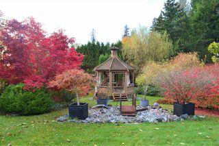 Photo 38: 12431 263 Street in Maple Ridge: Websters Corners House for sale : MLS®# R2524375