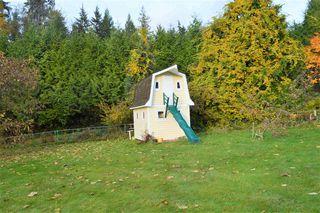 Photo 36: 12431 263 Street in Maple Ridge: Websters Corners House for sale : MLS®# R2524375