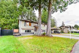 Photo 1: 5011 204TH Street in Langley: Langley City House for sale : MLS®# R2414334