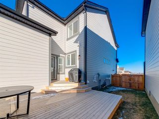 Photo 43: 84 Mahogany Crescent SE in Calgary: Mahogany Detached for sale : MLS®# A1051998