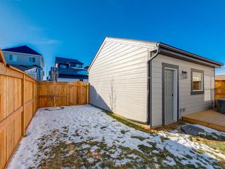 Photo 44: 84 Mahogany Crescent SE in Calgary: Mahogany Detached for sale : MLS®# A1051998