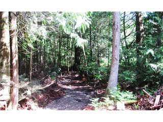 Photo 3: 1550 ADAMS Road: Bowen Island Land for sale : MLS®# V806312