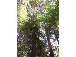 Photo 10: 1550 ADAMS Road: Bowen Island Land for sale : MLS®# V806312