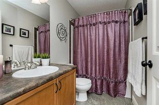 Photo 31: 20323 48 Avenue in Edmonton: Zone 58 House for sale : MLS®# E4203334