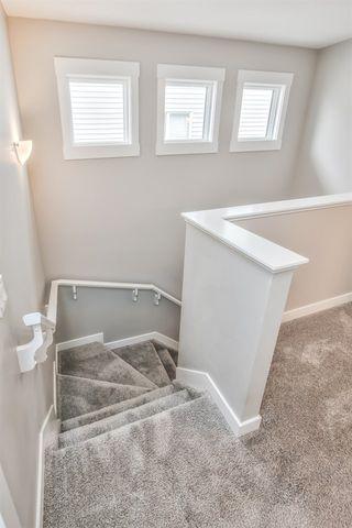 Photo 22: 6413 170 Avenue in Edmonton: Zone 03 House Half Duplex for sale : MLS®# E4213604