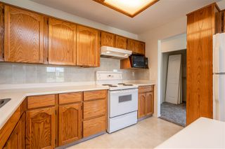 """Photo 10: 308 5360 205 Street in Langley: Langley City Condo for sale in """"Parkway Estates"""" : MLS®# R2496597"""