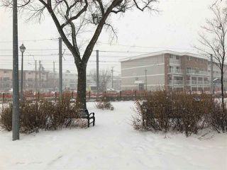 Photo 17: 306 10740 105 Street in Edmonton: Zone 08 Condo for sale : MLS®# E4221499