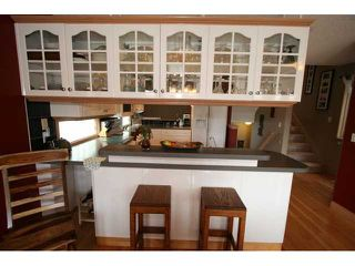 Photo 8: 250 25 Avenue NE in CALGARY: Tuxedo Residential Detached Single Family for sale (Calgary)  : MLS®# C3421200
