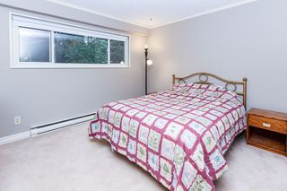 Photo 10: 26125 98 Avenue in Maple Ridge: Thornhill MR House for sale : MLS®# R2431983