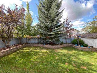 Photo 39: 48 CALICO Drive: Sherwood Park House for sale : MLS®# E4194522