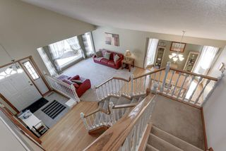 Photo 24: 48 CALICO Drive: Sherwood Park House for sale : MLS®# E4194522