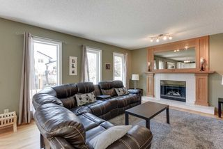 Photo 17: 48 CALICO Drive: Sherwood Park House for sale : MLS®# E4194522
