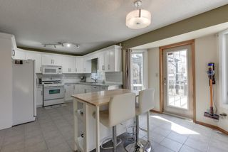 Photo 16: 48 CALICO Drive: Sherwood Park House for sale : MLS®# E4194522