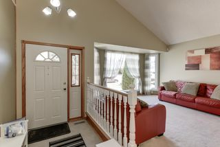 Photo 6: 48 CALICO Drive: Sherwood Park House for sale : MLS®# E4194522