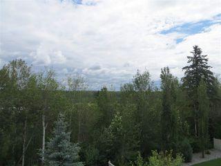 Photo 34: 2504 CAMERON RAVINE LANDING Landing in Edmonton: Zone 20 House for sale : MLS®# E4206082