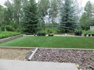 Photo 39: 2504 CAMERON RAVINE LANDING Landing in Edmonton: Zone 20 House for sale : MLS®# E4206082