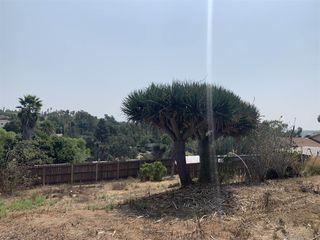 Photo 5: SAN MARCOS House for sale : 2 bedrooms : 2310 Bella Vista dr in vista