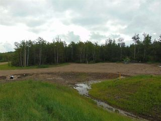 Photo 10: Lot 9 27331 Township Road 481: Rural Leduc County Rural Land/Vacant Lot for sale : MLS®# E4218336