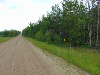 Photo 9: Lot 9 27331 Township Road 481: Rural Leduc County Rural Land/Vacant Lot for sale : MLS®# E4218336