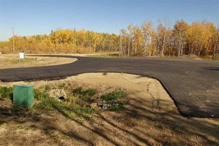 Photo 4: Lot 9 27331 Township Road 481: Rural Leduc County Rural Land/Vacant Lot for sale : MLS®# E4218336