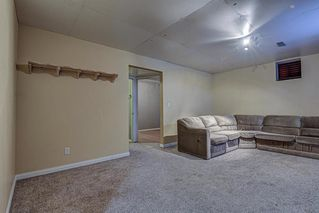 Photo 24: 117 Comstock Street: Rosebud Detached for sale : MLS®# A1035027