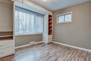 Photo 20: 117 Comstock Street: Rosebud Detached for sale : MLS®# A1035027